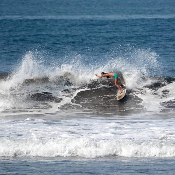 Molli Miller Surf Girls