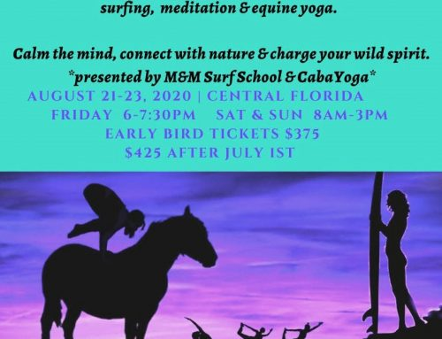 Mindfulness in Motion Retreat – August 2020